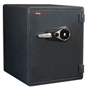 FireKing KY1915-1GRFL Fingerprint Fire Proof Business Safe, 6 Locking Bolts FireKing KY1915-1GRFL Fingerprint Fire Proof Business Safe, 6 Locking Bolts